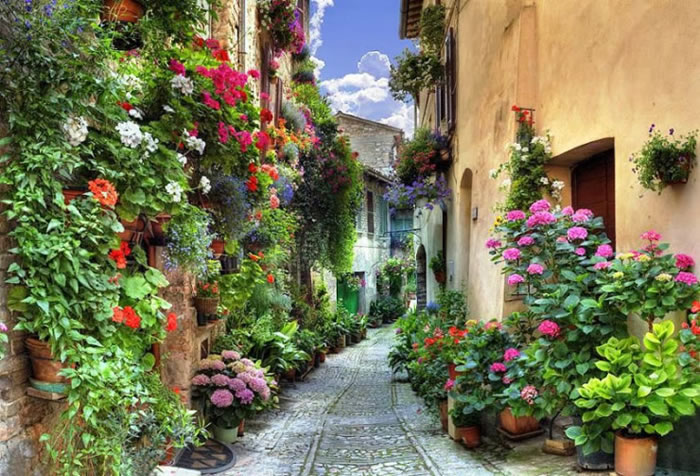 10 Picturesque Streets You Should Walk Down Before You Die 15