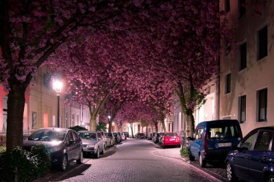 10 Picturesque Streets You Should Walk Down Before You Die 6