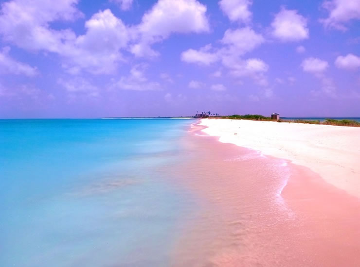 10 Weird And Wonderful Beaches You Must Visit Before You Die 17