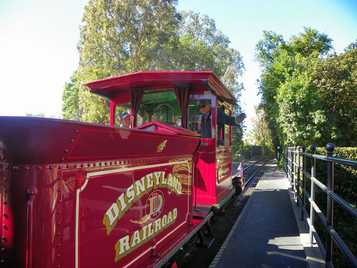 13 Things You Never Knew You Could Do At Disneyland 10