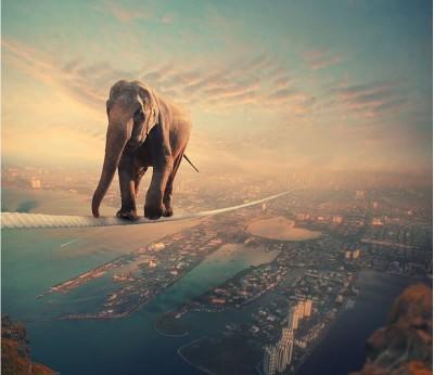 Amazing Surreal Digital Art By Photoshop Training Expert