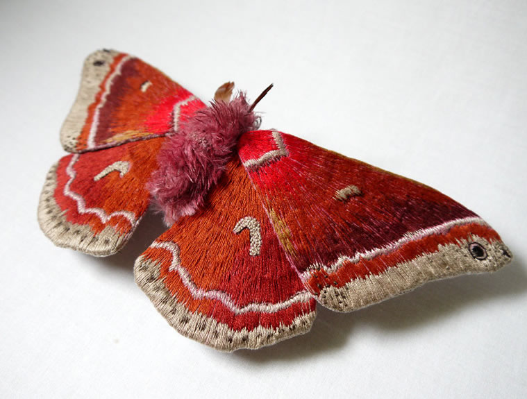 Custom Embroidery Amazing Giant Moths And Butterflies (5)