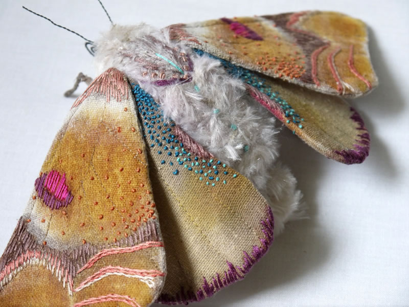 Embroidery Amazing Giant Moths And Butterflies (15)