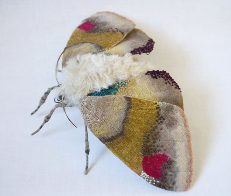 Embroidery Amazing Giant Moths And Butterflies (9)