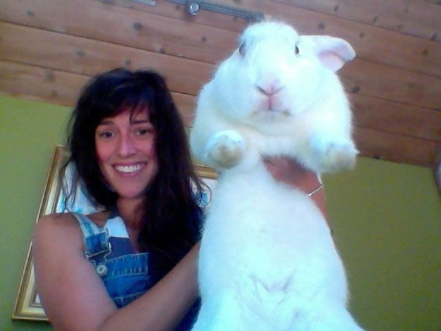 Out Of Control Nature Photos Of 25 Real Life Enormous Rabbits (6)
