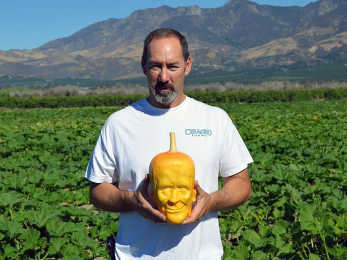 Guy Grows Frankenstein Shaped Pumpkins For Halloween 2
