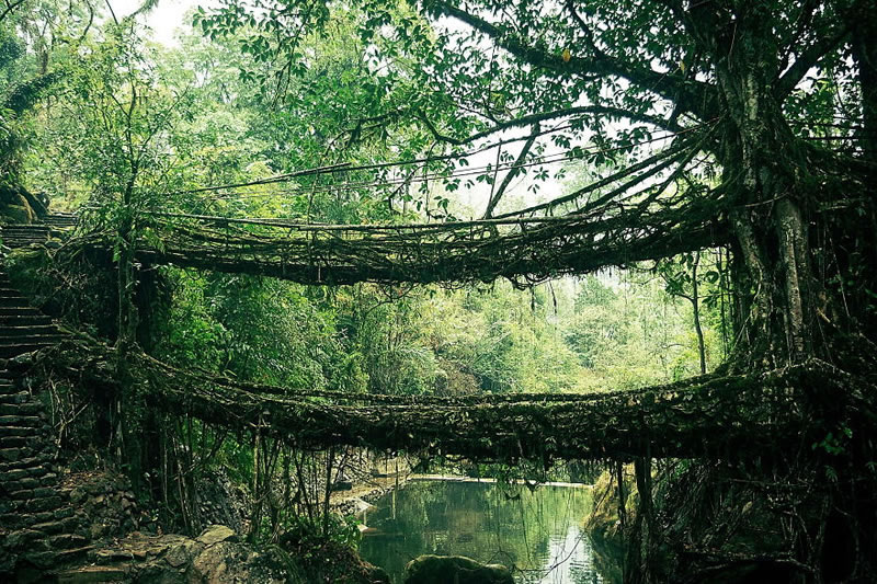25 Amazing Mystical Bridges That Will Take Your Breath Away (2)