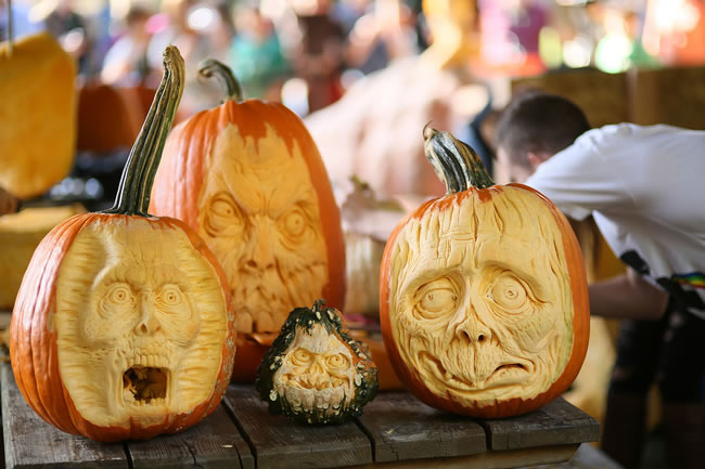 Amazing And Spooky Halloween Pumpkin Carvings (7)