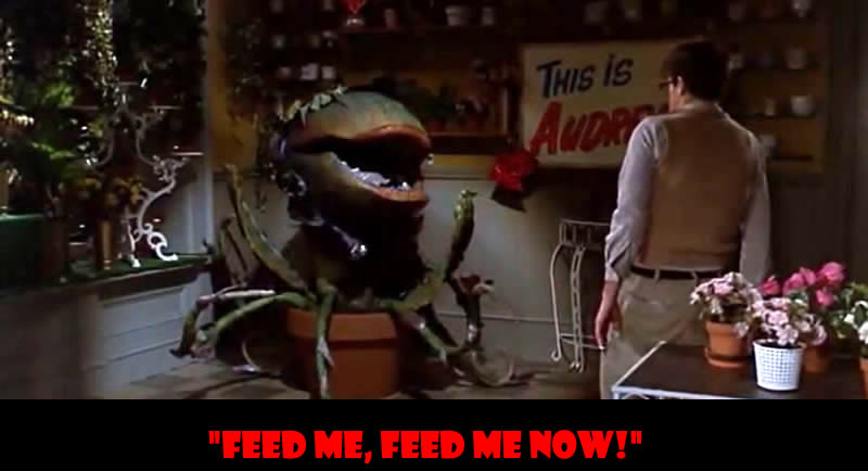 Feed me! Feed me now - 50 Of The Greatest Film Quotes Of All Time