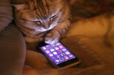 15 Incredible Cell Phone Apps You Shouldn`t Live Without