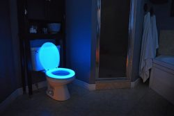 Glow In The Dark Bathroom Toilet Seat Prevents Fumbling At Night