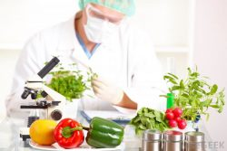 5 High-Paying Nutrition Careers