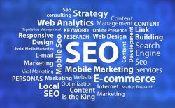 How SEO Management Helps a Startup Achieve Business Goals