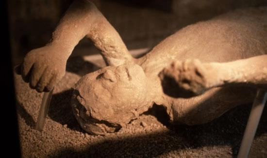 Doomed Life And Death Of Pompeii British Museum Exhibition