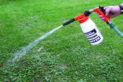 When Should You Apply Pre-Emergent Herbicide?